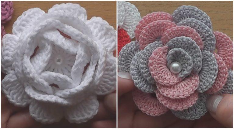 Amazing Flower Roses